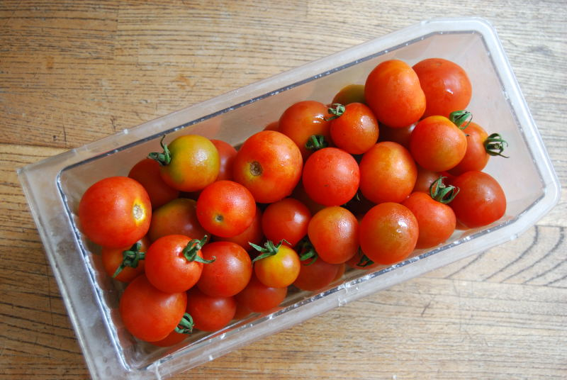 Cherry tomatoes in a fridge tray by Edward Middleton